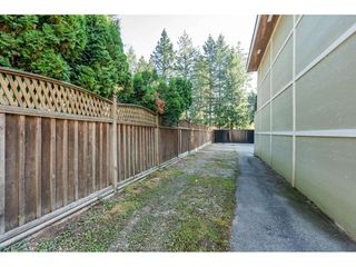 Photo 31: 4503 200 Street in Langley: Langley City House for sale : MLS®# R2506077