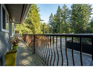 Photo 20: 4503 200 Street in Langley: Langley City House for sale : MLS®# R2506077