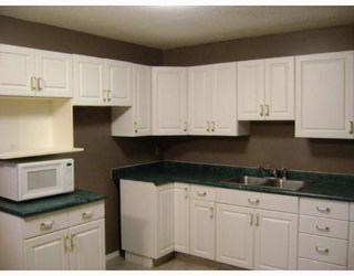 Photo 3: 131 LE MAIRE Street in WINNIPEG: Fort Garry / Whyte Ridge / St Norbert Residential for sale (South Winnipeg)  : MLS®# 2920608
