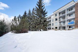 Photo 28: 121 4404 122 Street in Edmonton: Zone 16 Condo for sale : MLS®# E4189513
