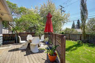 Photo 22: 141 HAVENHURST Crescent SW in Calgary: Haysboro Detached for sale : MLS®# A1028033