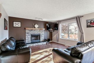 Photo 5: 43 Riverwood Court SE in Calgary: Riverbend Detached for sale : MLS®# A1029978