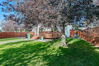 Photo 22: 43 Riverwood Court SE in Calgary: Riverbend Detached for sale : MLS®# A1029978