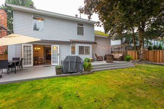 "Photo 30: 9365 210 Street in Langley: Walnut Grove House for sale in ""Walnut Grove"" : MLS®# R2498607"