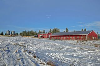 Photo 31: 30117 RANGE ROAD 22: Rural Mountain View County Detached for sale : MLS®# A1051168