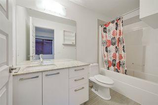 Photo 20: 202 9908 84 Avenue in Edmonton: Zone 15 Condo for sale : MLS®# E4224310