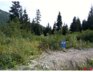 Photo 2: 20399 EDELWEISS Drive in Mission: Dewdney Deroche Land for sale : MLS®# F2827712