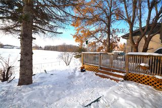 Photo 19: 15 Nolin Avenue in Winnipeg: Richmond Lakes Residential for sale (1Q)  : MLS®# 202003079