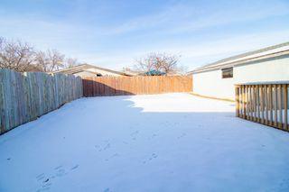 Photo 30: 110 Kushner Crescent in Winnipeg: Single Family Detached for sale (4H)  : MLS®# 201933144
