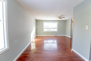 Photo 18: 110 Kushner Crescent in Winnipeg: Single Family Detached for sale (4H)  : MLS®# 201933144