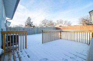 Photo 28: 110 Kushner Crescent in Winnipeg: Single Family Detached for sale (4H)  : MLS®# 201933144