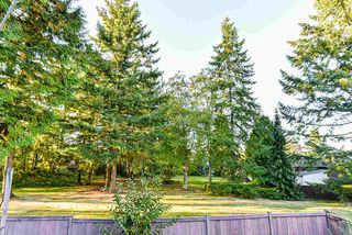 Photo 22: 12233 80B Avenue in Surrey: Queen Mary Park Surrey House for sale : MLS®# R2502694
