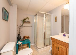 Photo 20: 17913 55 Avenue in Edmonton: Zone 20 House for sale : MLS®# E4199288