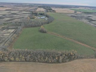 Photo 32: 54540 Rge Rd 210: Rural Strathcona County House for sale : MLS®# E4219140