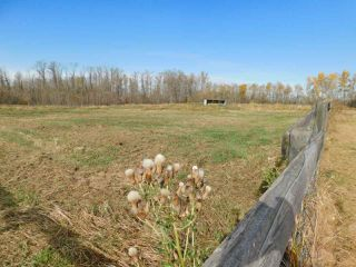 Photo 29: 54540 Rge Rd 210: Rural Strathcona County House for sale : MLS®# E4219140