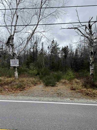 Photo 1: 787 Woodlawn Drive in Jordan Falls: 407-Shelburne County Vacant Land for sale (South Shore)  : MLS®# 202025701