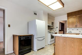 Photo 9: 3427 31 Street SW in Calgary: Rutland Park Detached for sale : MLS®# A1055896