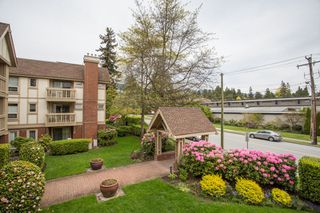 "Photo 20: 214 843 22ND Street in West Vancouver: Dundarave Condo for sale in ""TUDOR GARDENS"" : MLS®# R2528064"