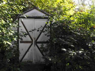 Photo 15: 5203 49 Avenue: Elk Point House for sale : MLS®# E4172752