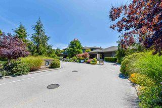 Photo 38: 1290 MORRIS Crescent in Delta: Beach Grove House for sale (Tsawwassen)  : MLS®# R2477159