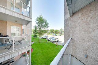Photo 25: 201 9008 99 Avenue in Edmonton: Zone 13 Condo for sale : MLS®# E4209425