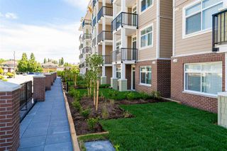 """Photo 19: 113 20686 EASTLEIGH Crescent in Langley: Langley City Condo for sale in """"The Geogia"""" : MLS®# R2507226"""