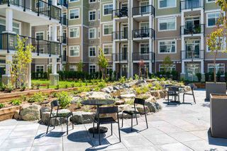 "Photo 18: 113 20686 EASTLEIGH Crescent in Langley: Langley City Condo for sale in ""The Geogia"" : MLS®# R2507226"