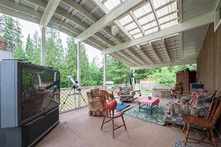 Photo 5: 12753 256 Street in Maple Ridge: Websters Corners House for sale : MLS®# R2520004