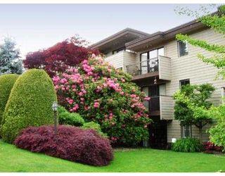 "Photo 1: 101 2125 W 2ND Avenue in Vancouver: Kitsilano Condo for sale in ""SUNNY LODGE"" (Vancouver West)  : MLS®# V537499"
