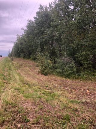 Photo 1: Twp 473A RR 12: Rural Leduc County Rural Land/Vacant Lot for sale : MLS®# E4171961