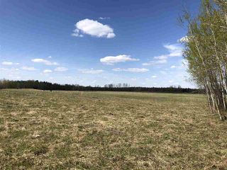 Photo 12: 225000 HWY 661: Rural Athabasca County Rural Land/Vacant Lot for sale : MLS®# E4197474