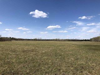 Photo 8: 225000 HWY 661: Rural Athabasca County Rural Land/Vacant Lot for sale : MLS®# E4197474