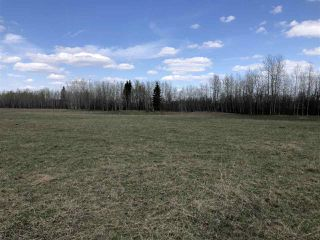 Photo 17: 225000 HWY 661: Rural Athabasca County Rural Land/Vacant Lot for sale : MLS®# E4197474