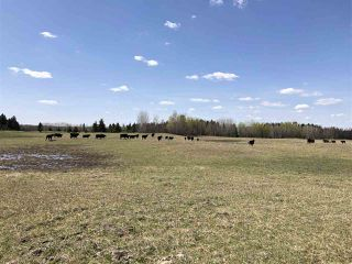 Photo 14: 225000 HWY 661: Rural Athabasca County Rural Land/Vacant Lot for sale : MLS®# E4197474