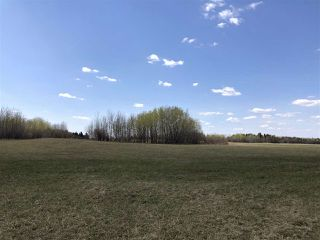 Photo 6: 225000 HWY 661: Rural Athabasca County Rural Land/Vacant Lot for sale : MLS®# E4197474