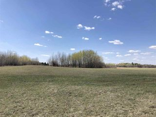 Photo 7: 225000 HWY 661: Rural Athabasca County Rural Land/Vacant Lot for sale : MLS®# E4197474