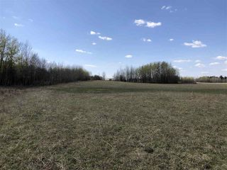 Photo 3: 225000 HWY 661: Rural Athabasca County Rural Land/Vacant Lot for sale : MLS®# E4197474