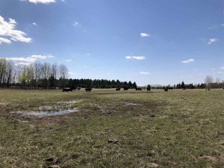 Photo 11: 225000 HWY 661: Rural Athabasca County Rural Land/Vacant Lot for sale : MLS®# E4197474