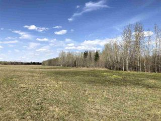 Photo 9: 225000 HWY 661: Rural Athabasca County Rural Land/Vacant Lot for sale : MLS®# E4197474