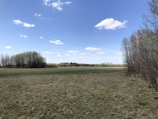 Photo 4: 225000 HWY 661: Rural Athabasca County Rural Land/Vacant Lot for sale : MLS®# E4197474