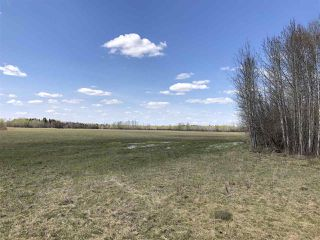 Photo 5: 225000 HWY 661: Rural Athabasca County Rural Land/Vacant Lot for sale : MLS®# E4197474