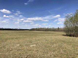 Photo 15: 225000 HWY 661: Rural Athabasca County Rural Land/Vacant Lot for sale : MLS®# E4197474