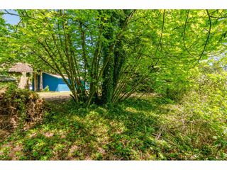 Photo 15: 19730 40A AVE Avenue in Langley: Brookswood Langley House for sale : MLS®# R2461486