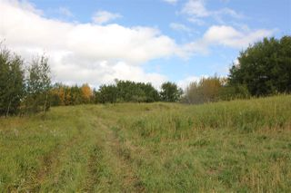Photo 5: 51159 RGE RD 223: Rural Strathcona County House for sale : MLS®# E4217786