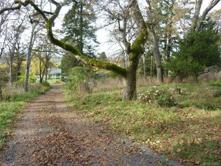 Photo 4: 4033 Braefoot Rd in COURTENAY: SE Mt Doug House for sale (Saanich East)  : MLS®# 575642