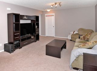Photo 18: 2 SPRUCE GROUSE Crescent: Spruce Grove House for sale : MLS®# E4171483