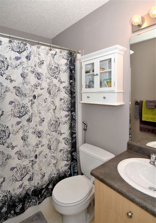 Photo 17: 2 SPRUCE GROUSE Crescent: Spruce Grove House for sale : MLS®# E4171483