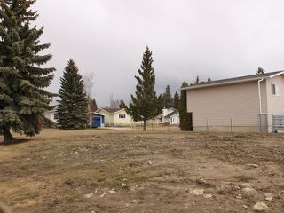 Photo 4: 5515 48 Street: Tofield Vacant Lot for sale : MLS®# E4179529