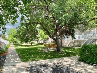 Photo 2: 516 224 Greenway Crescent West in Winnipeg: Crestview Condominium for sale (5H)  : MLS®# 202013723