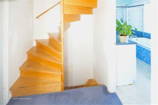 Photo 16: 3441 TRIUMPH Street in Vancouver: Hastings Sunrise House for sale (Vancouver East)  : MLS®# R2394925